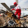 مانور امداد و نجات سپاه تهران بزرگ