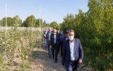 اقتصاد و معیشت کشاورزان مهمترین دغدغه ستاد احیای دریاچه ارومیه