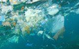 آلودگی میکروپلاستیک اقیانوس به خشکی رسید