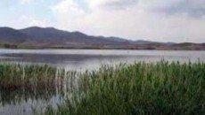 نظارت بر تادیه حقابه های زیست محیطی تالاب ها بر عهده شرکت های آب منطقه ای است