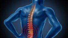 اصول دهگانه وضعیت های کاری مناسب و نرمش های مربوط به کمر درد