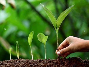حفط محیط زیست، مسئولیت نسل آینده
