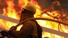 """آتشنشانی """"از خود گذشتگی"""" است"""
