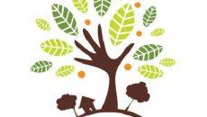 صلح سبز اسناد محرمانه مخرب محیط زیست را افشا میکند