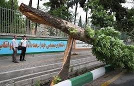 آمادگی نیروهای خدمات شهری برای مقابله با سیل و طوفان های احتمالی تهران