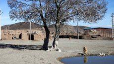35 درصد جمعیت کشور تحت تاثیر خشکسالی قرار دارند