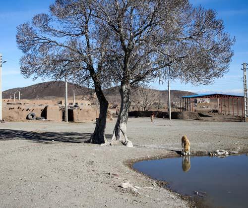 ۳۵ درصد جمعیت کشور تحت تاثیر خشکسالی قرار دارند