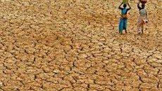 خشکسالی شدید 45 کشور را تهدید می کند