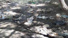 رفع مشکلات زیست محیطی روستاهای لواسانات در دستور کار