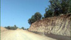 ساخت جاده در قلب جنگل!