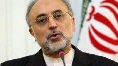 صالحی: ایران وارد تجاری سازی فناوری هسته ای می شود
