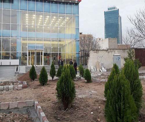 ماجرای درختان کنده شده جاده ائل گلی تبریز به کجا رسید؟