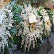 تصاویر گزارشی از درگذشت مادر گرامی جناب آقای رضا میرزایی قره لر