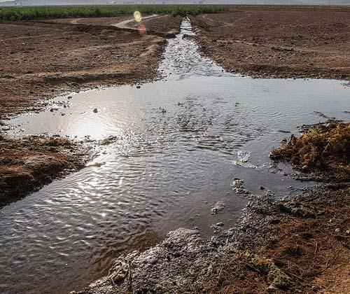 از بین رفتن ۱۱۵ میلیارد متر مکعب آب در دولت گذشته