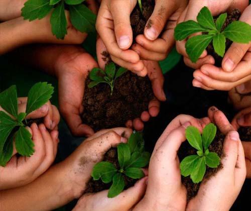 امسال برای محیط زیست ۵ قدم برداریم