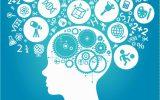 بررسی وضعیت برنامه ارزیابی ایمنی و بهداشت در شرکت های منتخب