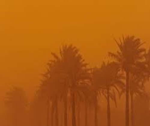 گرد و غبار نفس کشاورزی را هم گرفت!
