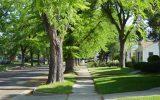 کاربرد مدیریت دانش در طراحی فضاهای عمومی شهری با تاکید بر ایمنی  و امنیت