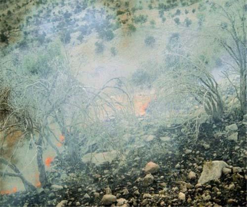 """آتش سوزی هفت هکتار مراتع جنگلی """"دوره چگنی"""""""