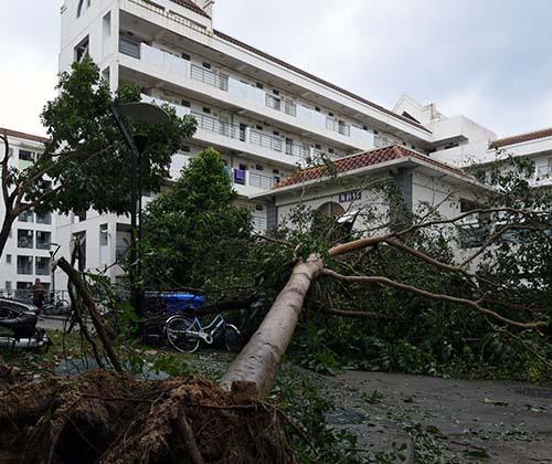 طوفان مرانتی در شرق چین ۲۸ قربانی گرفت