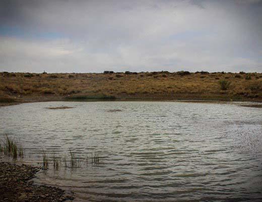 بارشهای اخیر بحران آب کشور را حل نمیکند